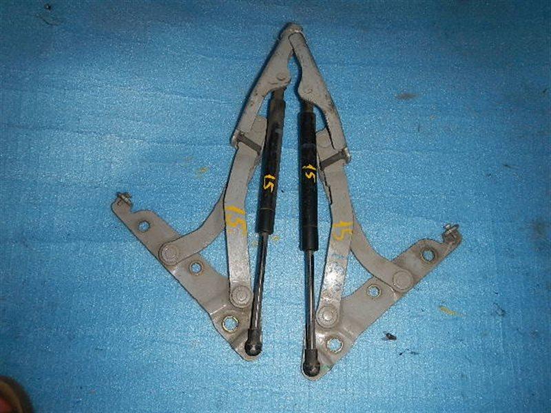 Амортизатор багажника Nissan Teana J31 ст.916000015
