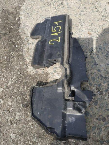 Защита радиатора Lexus Hs250H ANF10 2AZ-FXE 2011 левая