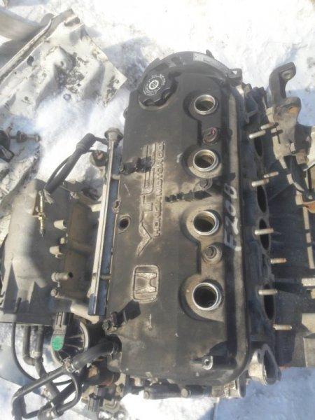 Крышка головки блока цилиндров Honda Accord CF3, CF4, CF5, CF6 F20B 2000