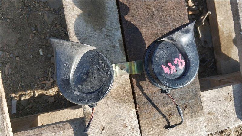 Сигнал звуковой Bmw X5 E53 M54B30 2005