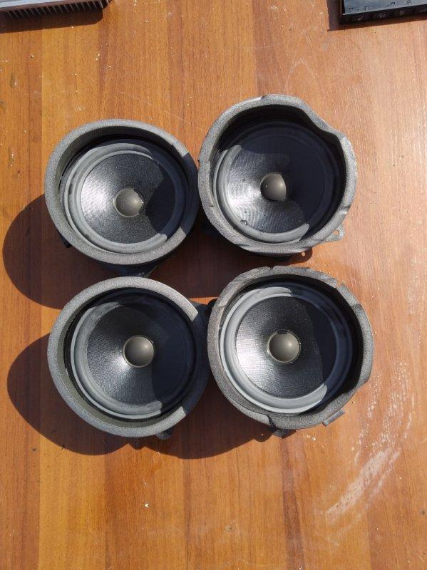 Комплект динамиков Bmw X5 E53 N62B44 2006