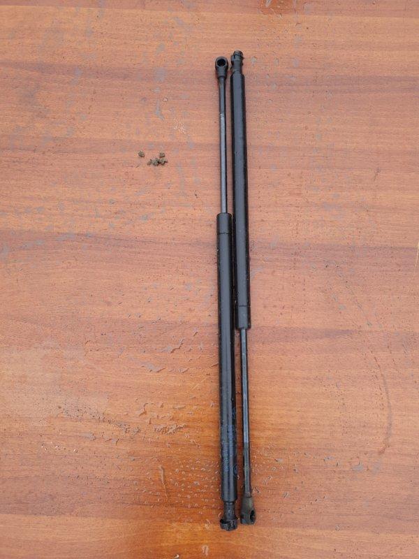 Амортизатор багажника Bmw X5 E53 N62B44 2006