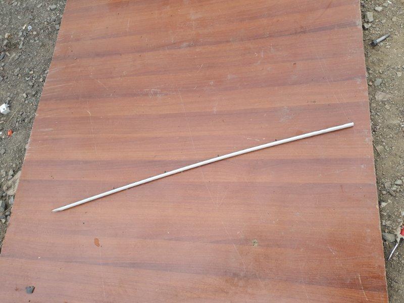 Молдинг на дверь Bmw X5 E53 M54B30 2005 передний правый