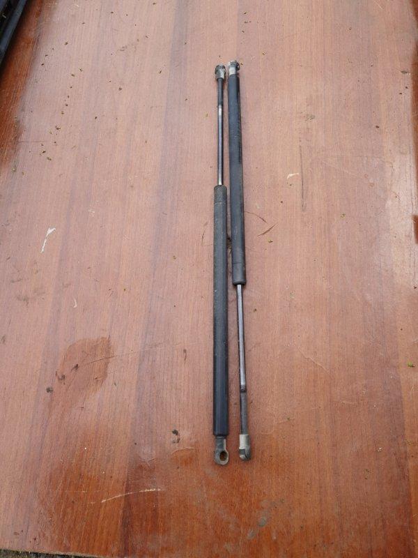 Амортизатор багажника Bmw X5 E53 M62B44 2001