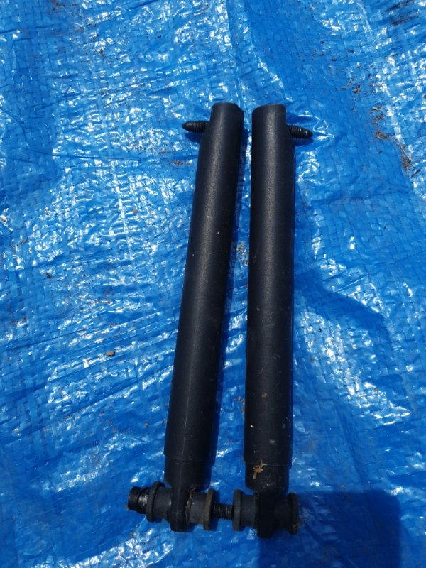 Амортизатор крышки багажника Bmw X5 E53 M54B30 2002