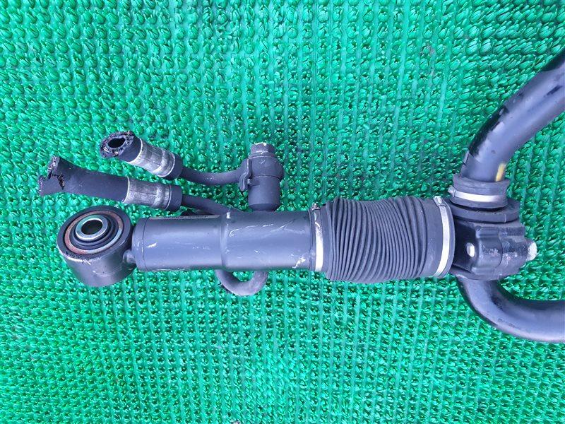 Гидроцилиндр стабилизатора Lexus Gx460 URJ150 1URFE 2012 задний (б/у)