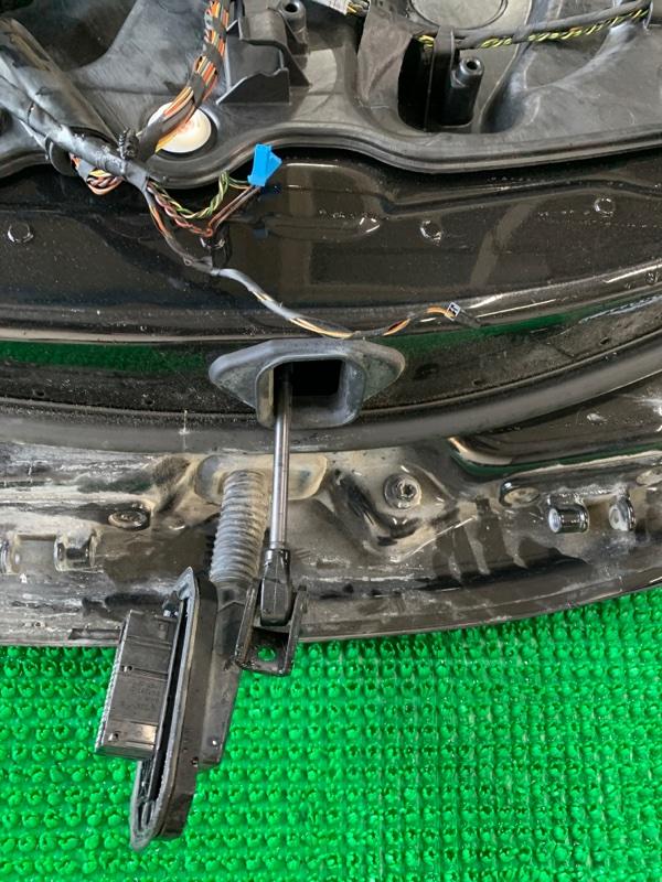 Ограничитель двери Bmw 7-Series F01 N63B44 2008 передний левый (б/у)