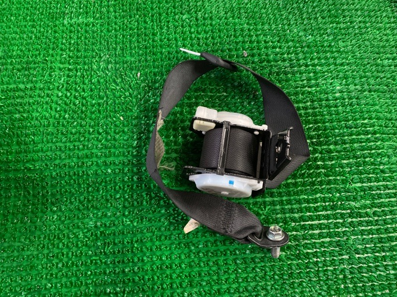Ремень безопасности Infiniti M35 Y50 VQ35DE 2006 задний (б/у)