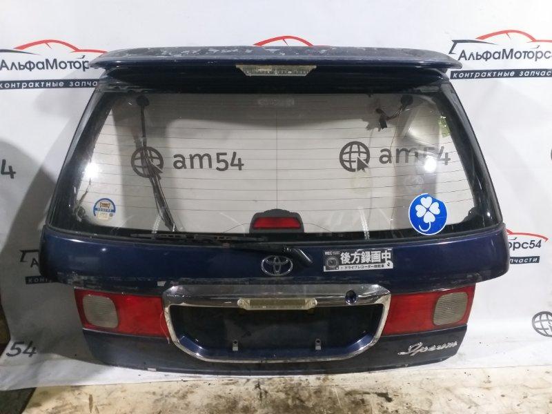 Дверь 5-я Toyota Ipsum SXM10