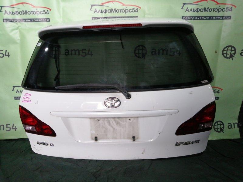 Дверь 5-я Toyota Ipsum ACM21 2AZ-FE 2001 задняя