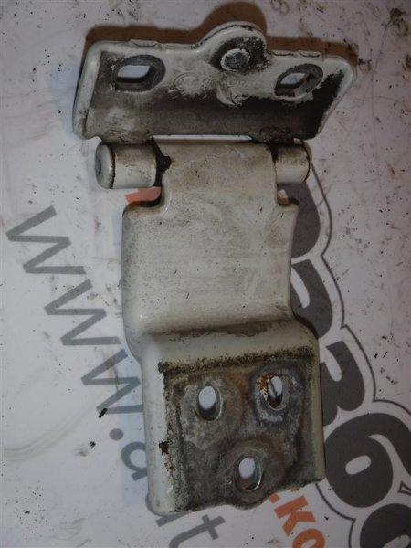 Петля двери Fiat Ducato 250 4HV 2008 задняя левая нижняя