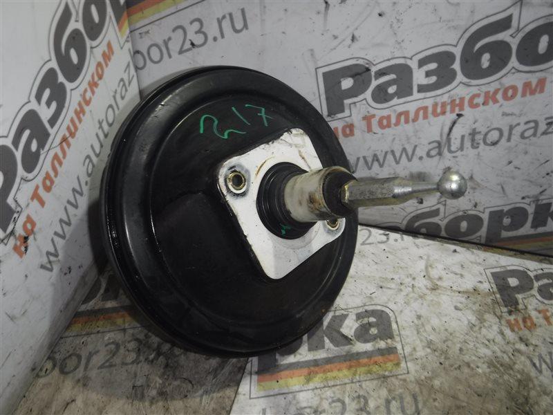 Вакуумный усилитель тормозов Vw Passat B5 3B5 AFN 1998