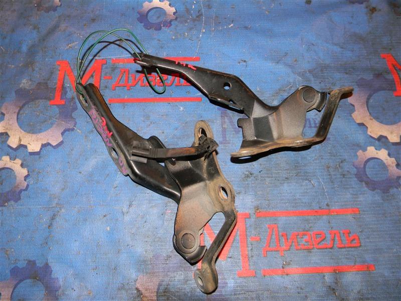 Петля капота Toyota Corolla Fielder NZE121 1NZ-FE 2001