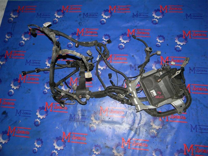 Электропроводка Toyota Camry ACV40 2AZ-FE 2006