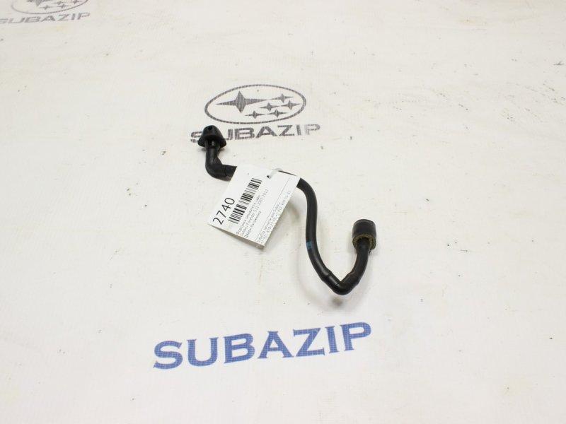 Форсунка омывателя Subaru Forester S12 2007 задняя