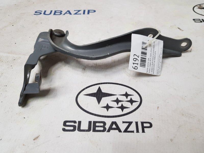 Петля капота Subaru Legacy B14 2009 левая
