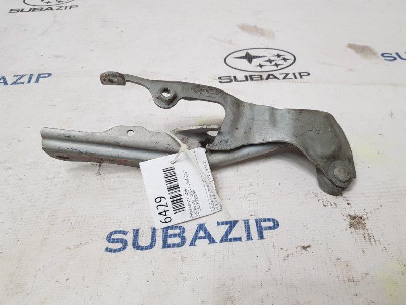 Петля капота Subaru Impreza G12 2008 правая