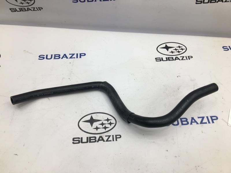 Шланг гидроусилителя Subaru Forester S12 EJ253
