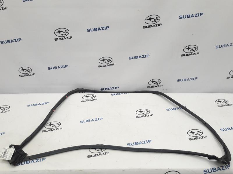 Уплотнитель двери Subaru Forester S11 EJ203HPRHE 2007 задний правый
