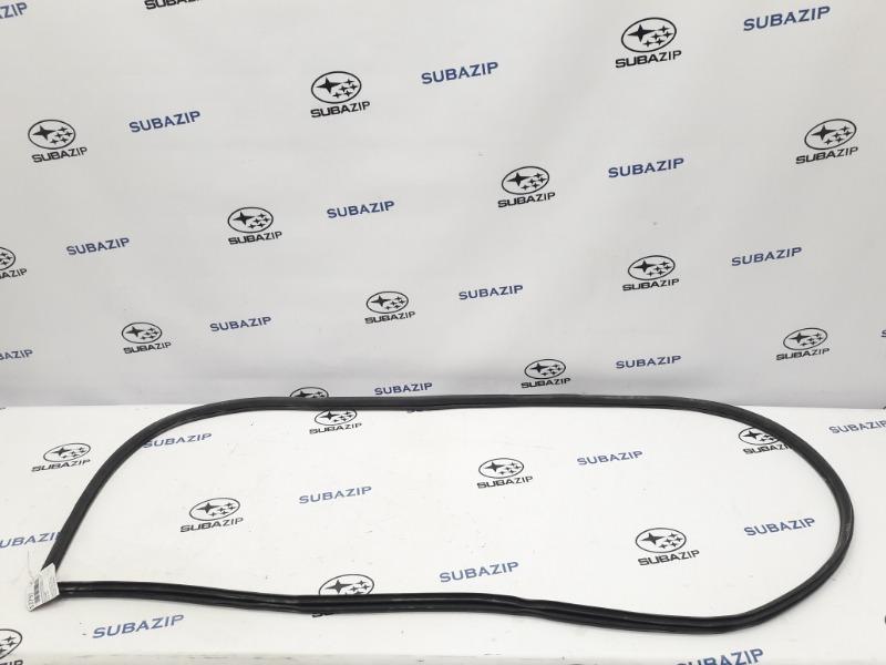 Уплотнитель дверной в проем Subaru Forester S12 EJ204 2009