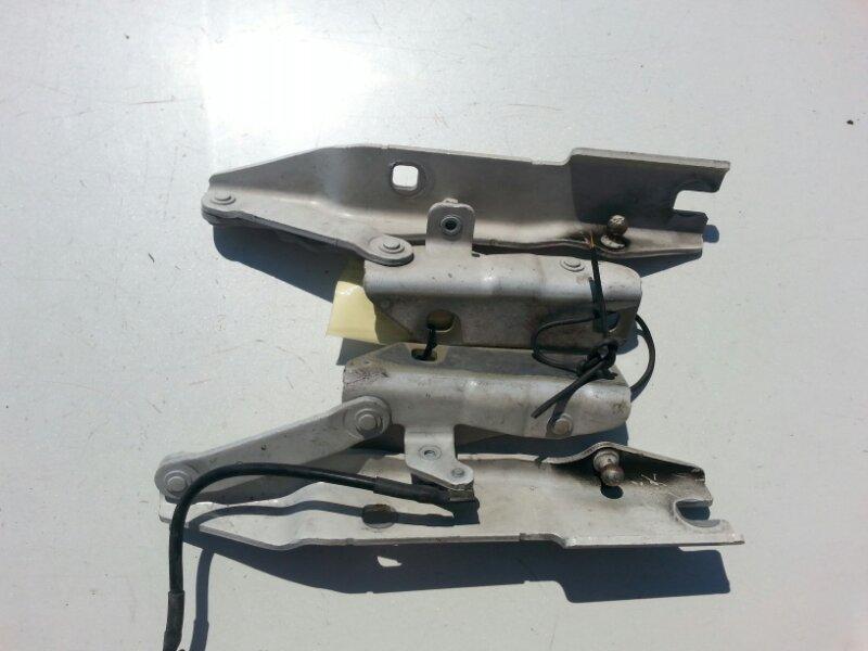 Петля капота Bmw 5-Series E60 M54B25 2004
