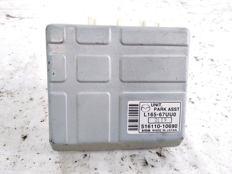 Блок управления камерой заднего вида Mazda Mpv LW3W AJ 2004