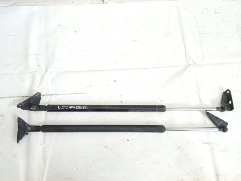Амортизатор задней двери Toyota Ipsum SXM10 3CTE 1998 задний