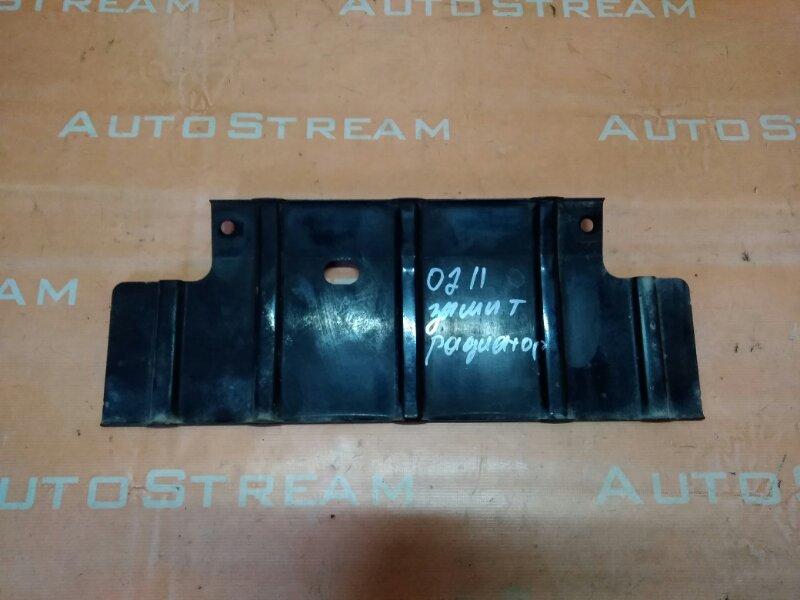 Защита радиатора Mitsubishi Canter FE72DE 4M50T 2007