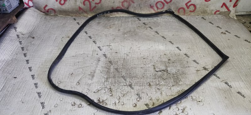 Уплотнительная резинка Ssangyong Rexton RJN D27DTP 2007 задняя правая