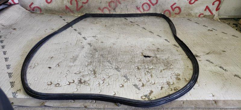 Уплотнительная резинка Ssangyong Rexton RJN D27DTP 2007 задняя левая