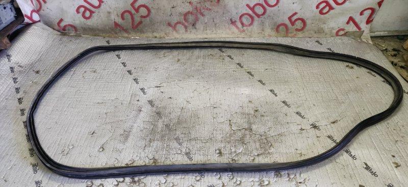 Уплотнительная резинка Hyundai Santa Fe CM D4EA 2007 задняя