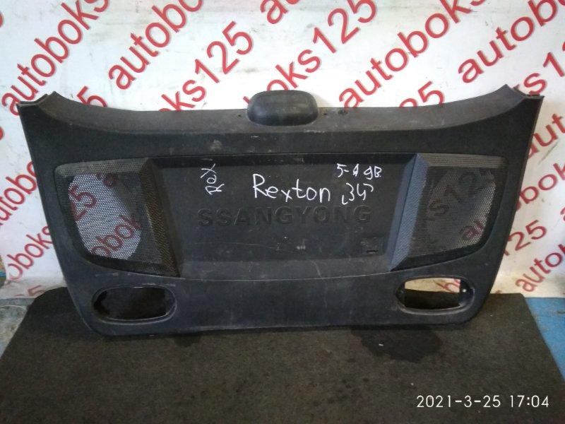 Обшивка двери багажника Ssangyong Rexton 2005 задняя