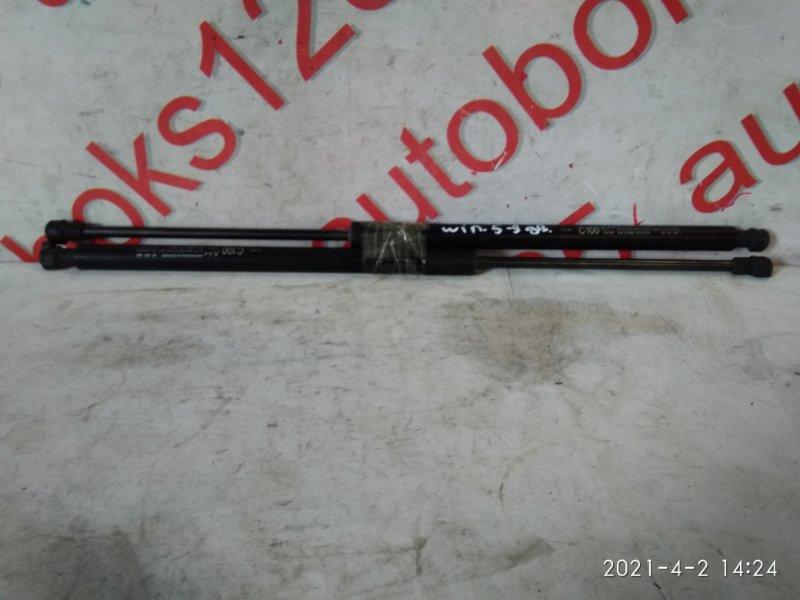 Амортизатор 5-ой двери Daewoo Winstorm KLAC Z20S 2008