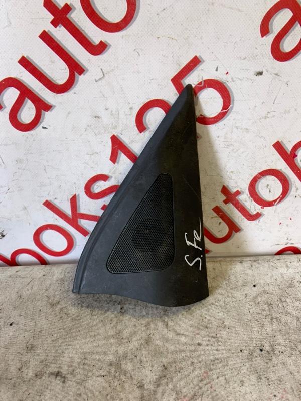Уголок двери Hyundai Santa Fe CM D4EA 2007 передний правый