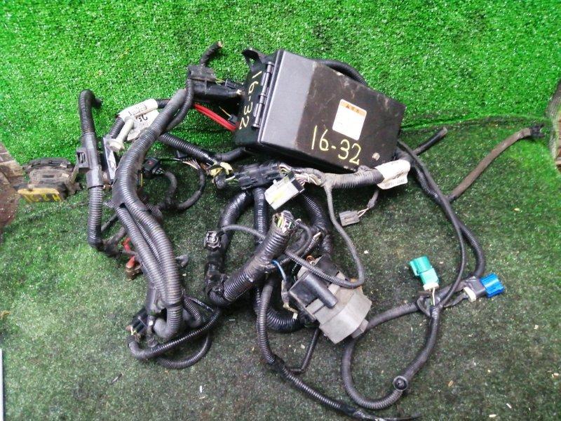 Проводка двигателя Ford Focus EDDF 2002