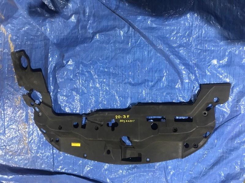 Защита подкапотного пространства Toyota Mark X Zio ANA10 2AZ-FE передняя