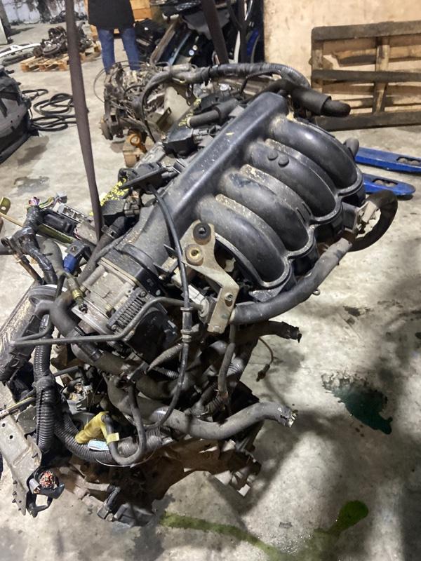 Проводка двигателя Nissan Presage TU31 QR25DE