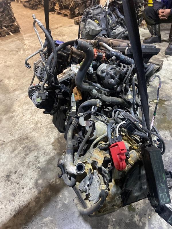 Проводка двигателя Nissan Cube AZ10 CGA3DE 2000