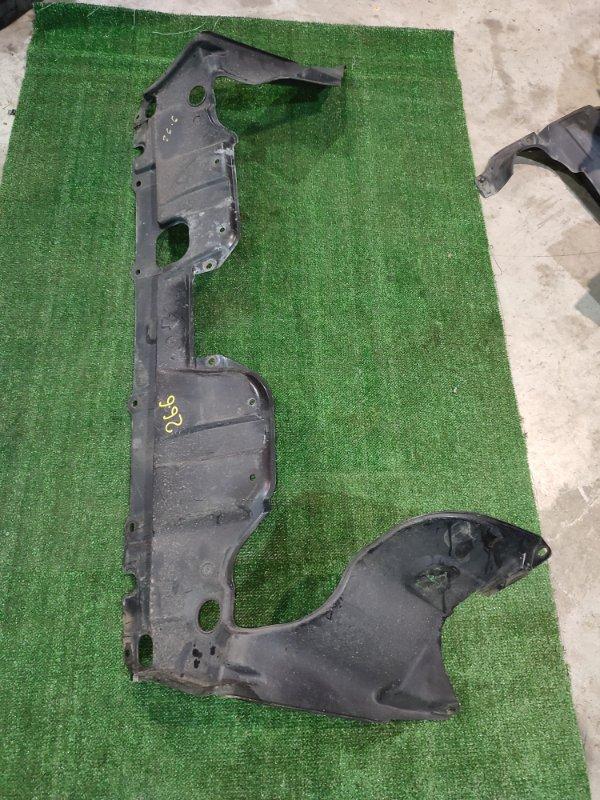 Защита двс Honda Stepwgn RG1 K20A