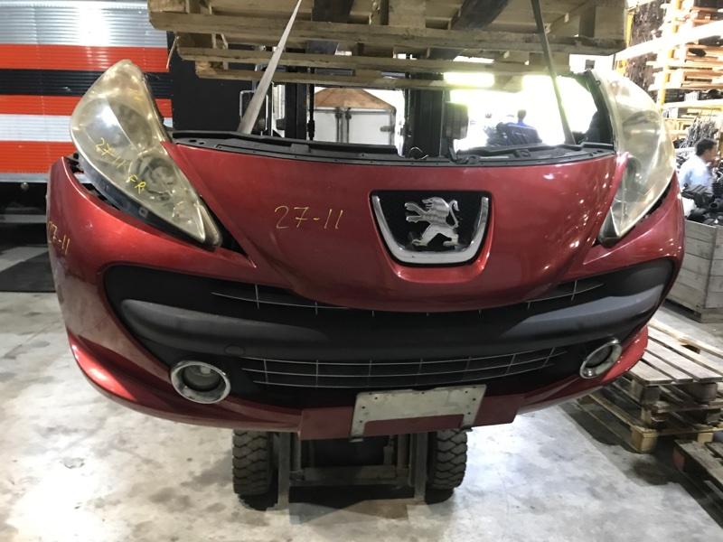 Nose cut Peugeot 207Cc PSA5FW 2003
