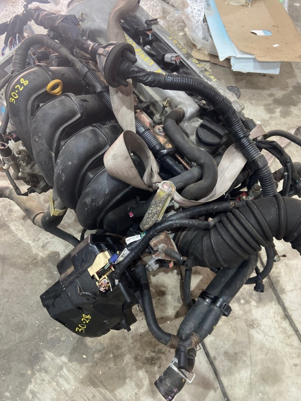Проводка двигателя Toyota Isis ZNM10W 1ZZ-FE