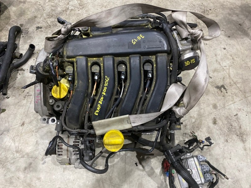 Проводка двигателя Renault Lutecia K4M D800