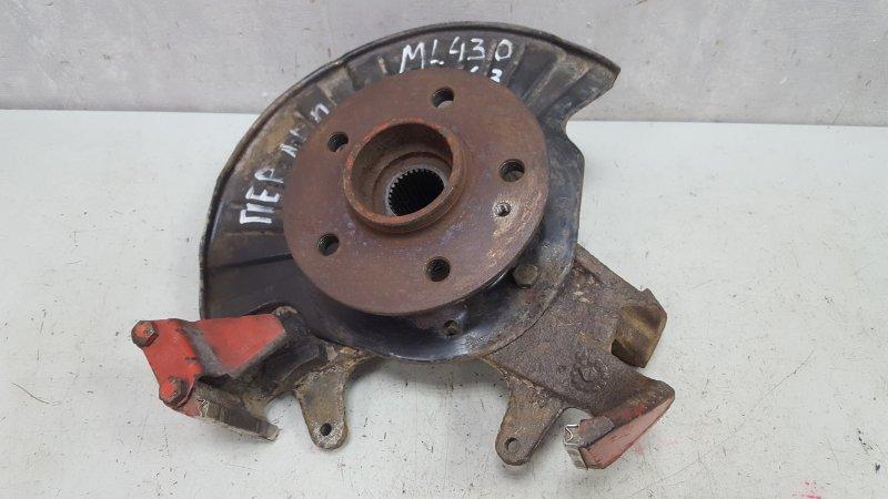 Поворотный кулак Mercedes Ml430 W163 M113.942 1999 передний левый