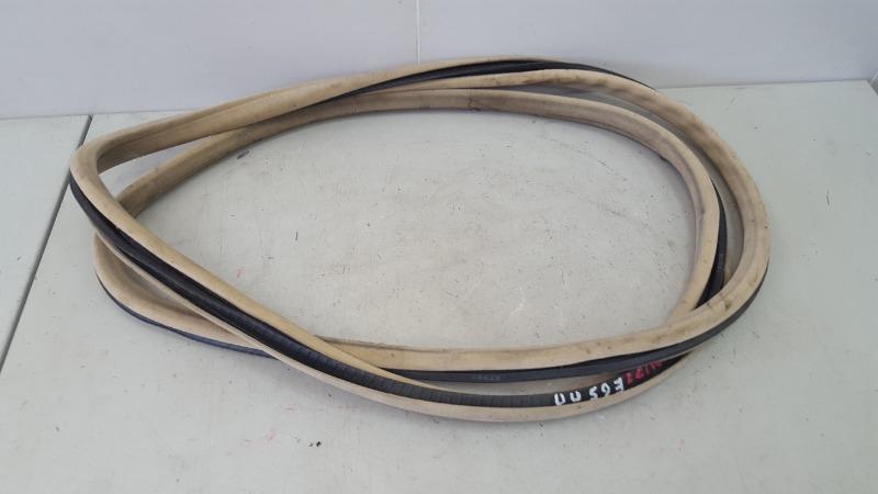Уплотнительная резинка проема двери Bmw 745I E65 N62B44A 4.4Л 2002 передняя правая