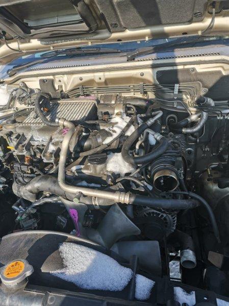 Двигатель Nissan Safari WTY61 ZD30