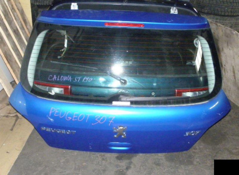 Дверь задняя Peugeot 307 3A/C NFU 10FX60