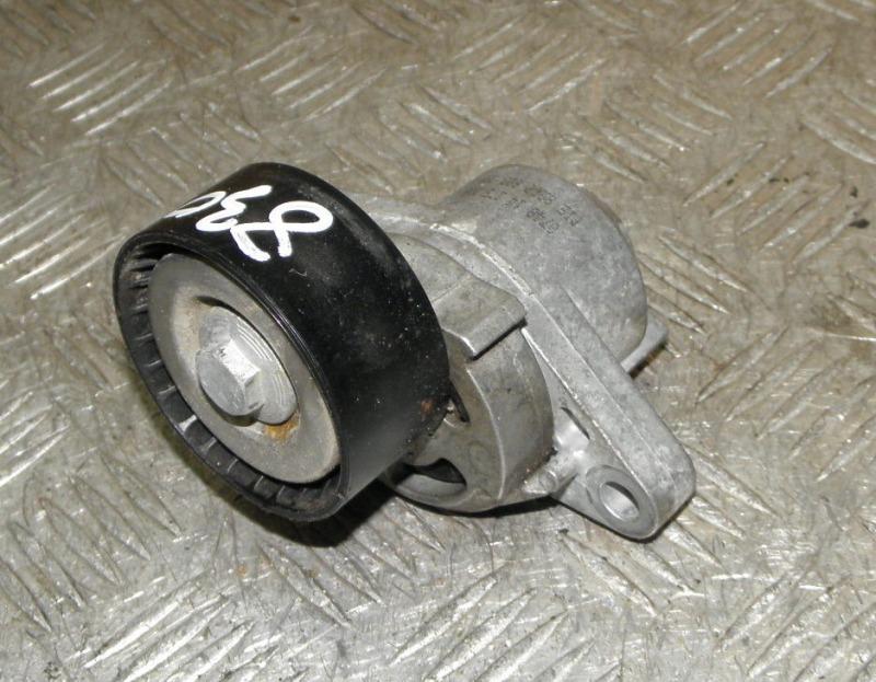 Натяжитель Renault Scenic F4R741 (2.0 2000