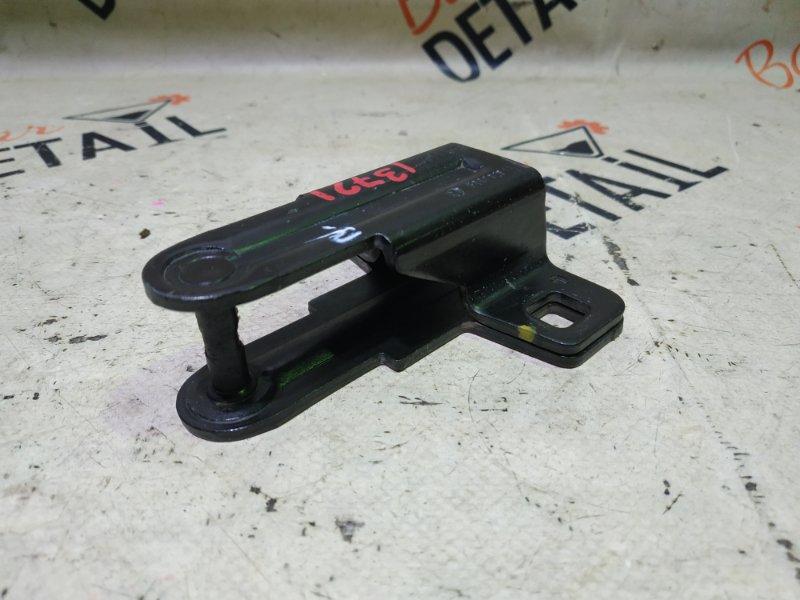 Петля багажника Bmw X5 E53 M54B30 2002 задняя