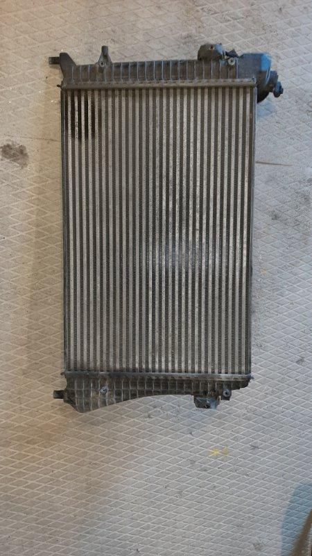 Радиатор интеркулера (интеркулер) Volkswagen Passat B6 3C5 BLS 2007