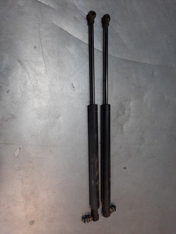 Амортизатор багажника Peugeot 307 3A/C RFN (EW10J4) 2004